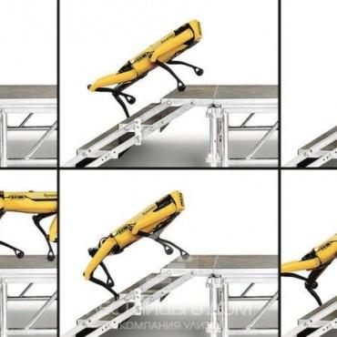 Лестница – не помеха для современных роботов